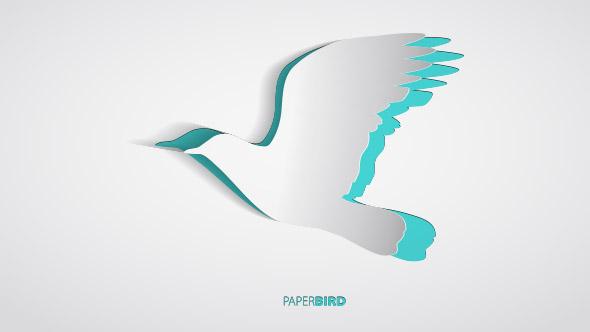portfoiofeatured-02